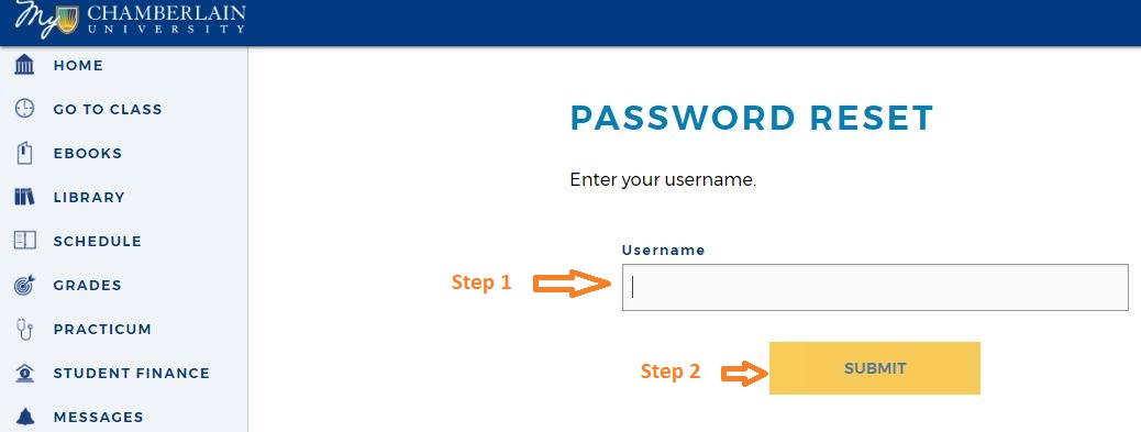 Chamberlain Student Student login forgot password step 3