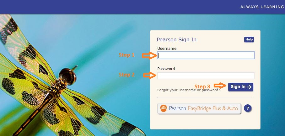 Pearson Realize Student login step 2